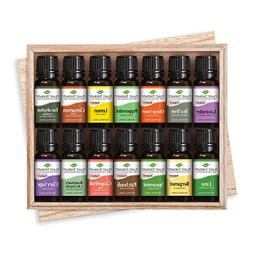 Plant Therapy Top 14 Essential Oil Set, Includes 100% Pure,