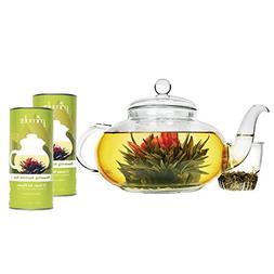 Primula Daisy Teapot with 24 Tea Flowers