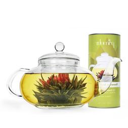 Primula Daisy Teapot with 12 Jasmine Flowering Teas, 40-Ounc