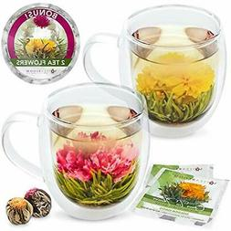 Teabloom Extra-Large Insulated Double Wall Glass Mugs & Bloo