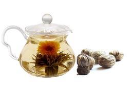 Tea Beyond FLS-GPTS-802 Fab Flowering Teapot Fairy Set