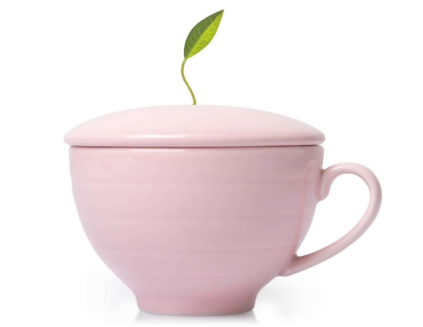 Tea Forte Jardin Gift Cup Botanical Foodie Gourmet