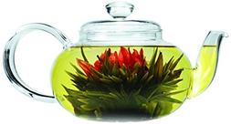 Primula Lea Teapot with Infuser and 2 Flowering Teas, 22-Oun