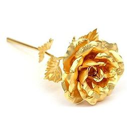 Beautiful Rose Flower Golden Foil Lasts Forever with Gift Bo
