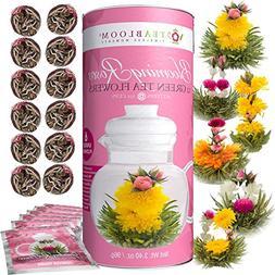 Teabloom Rose Flowering Tea – 12 Hand Tied Blooming Tea Fl
