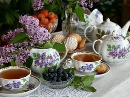 Russian Porcelain Tea set Dulevo 6 pers 15 pc Kuznetsov Porc