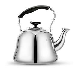 Tea Kettle Stovetop Kettles Teapot Stainless Steel-Mirror Fi